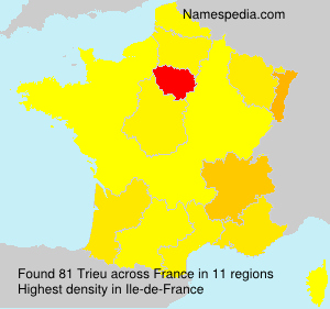 Surname Trieu in France