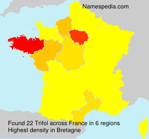 Surname Trifol in France