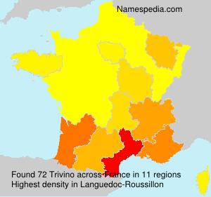 Surname Trivino in France