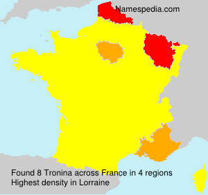 Surname Tronina in France