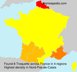 Surname Troquette in France