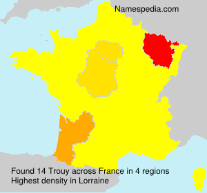 Surname Trouy in France