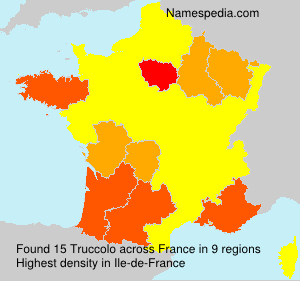 Surname Truccolo in France