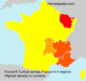 Surname Tumiati in France