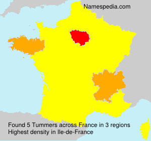 Surname Tummers in France