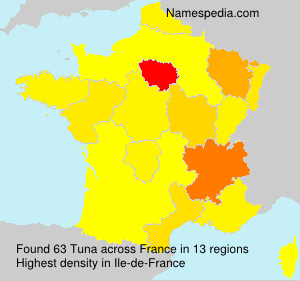 Familiennamen Tuna - France