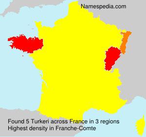 Surname Turkeri in France