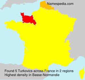 Surname Turkovics in France