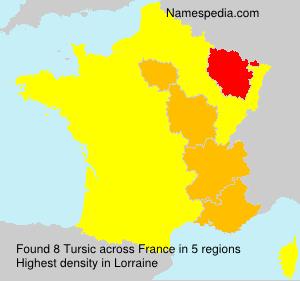 Surname Tursic in France