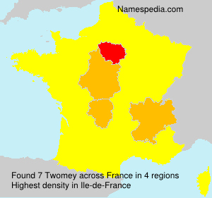 Surname Twomey in France