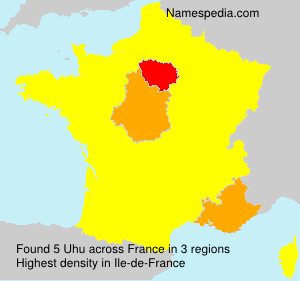 Surname Uhu in France