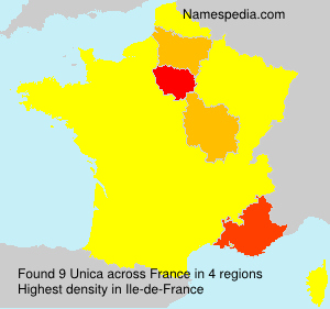 Surname Unica in France
