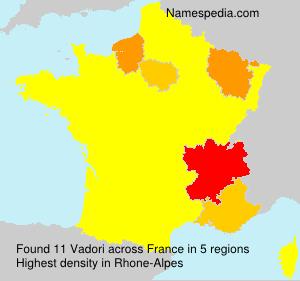 Surname Vadori in France