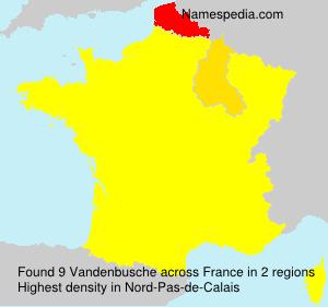 Surname Vandenbusche in France