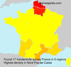 Surname Vandenhole in France