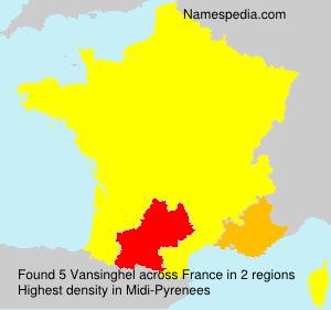 Familiennamen Vansinghel - France