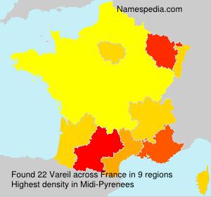 Surname Vareil in France