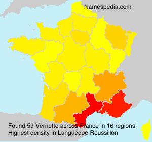 Surname Vernette in France