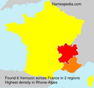 Surname Vernucci in France