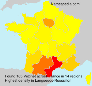 Surname Vezinet in France