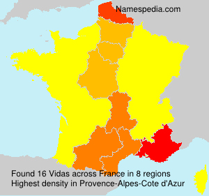 Surname Vidas in France