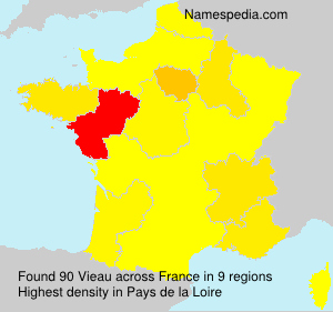 Surname Vieau in France