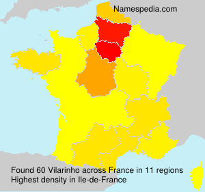 Surname Vilarinho in France