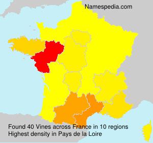 Familiennamen Vines - France