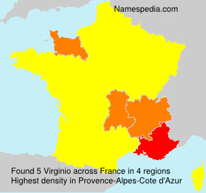 Surname Virginio in France