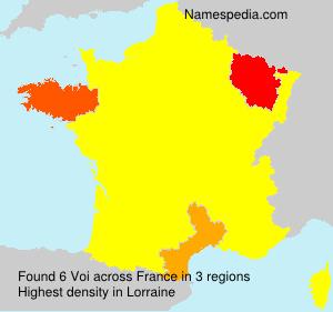Surname Voi in France