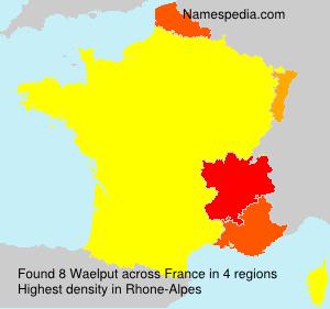 Familiennamen Waelput - France