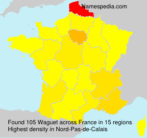 Surname Waguet in France