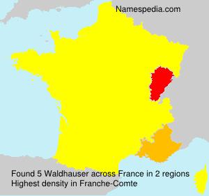 Familiennamen Waldhauser - France