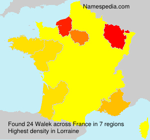 Surname Walek in France