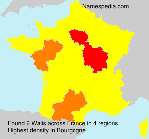 Surname Walis in France