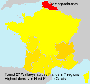 Surname Wallaeys in France