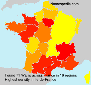 Surname Wallis in France
