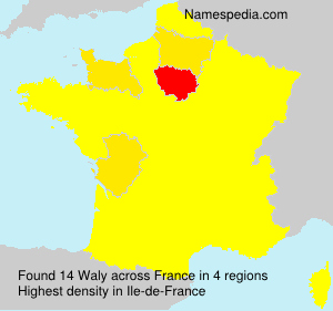 Surname Waly in France