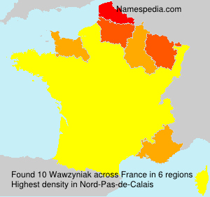 Surname Wawzyniak in France