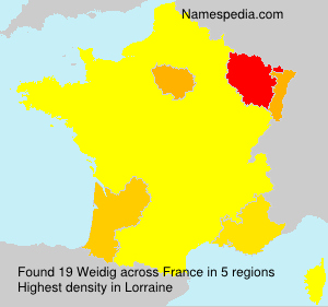 Surname Weidig in France