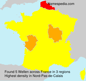 Surname Wellen in France