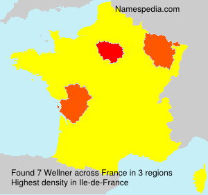 Surname Wellner in France