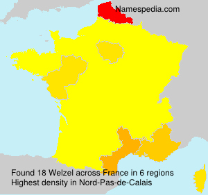 Surname Welzel in France