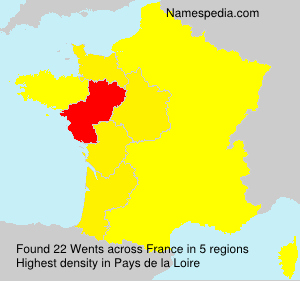Surname Wents in France