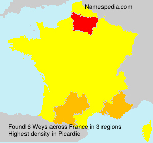 Surname Weys in France