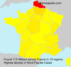 Surname Wibaut in France
