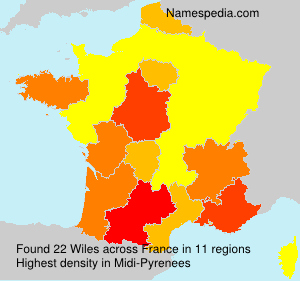 Surname Wiles in France