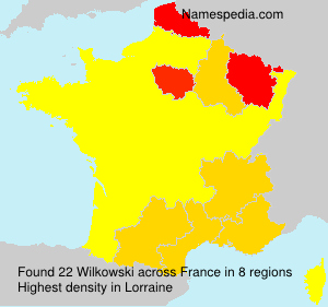 Surname Wilkowski in France