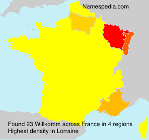 Surname Willkomm in France