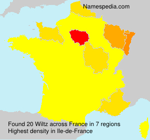 Surname Wiltz in France